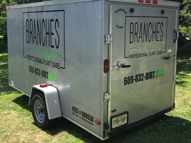 Branches Vehicle Graphics